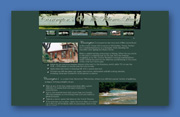 Carrington's Web Site Design - Wimberley, Texas